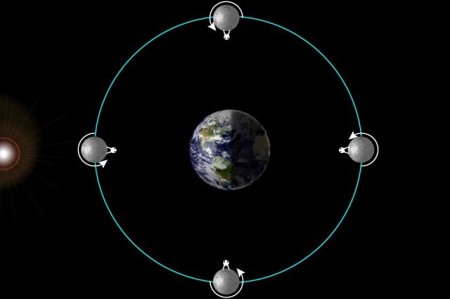 Moon's Correct Rotation