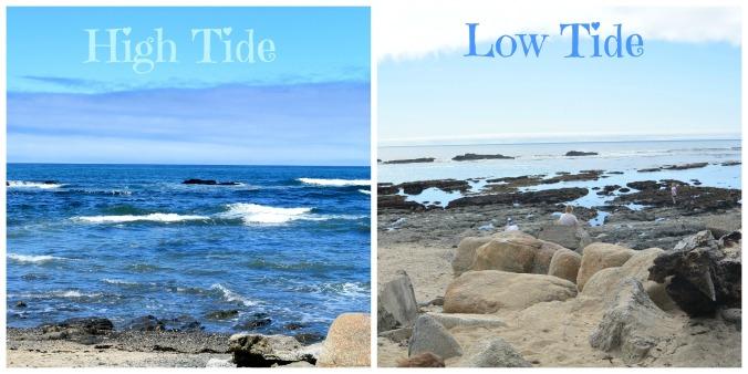 high-tide-6.jpg