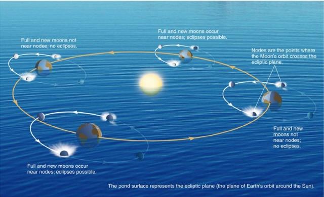 ecliptic:pond